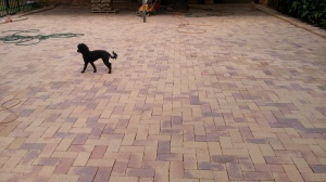 Paving with Corobrick Namaqua